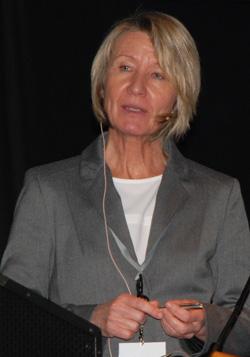 Arbeid og helse - Åpen arena 2014 Irene Øyeflaten